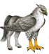 Animagus Hippogriff